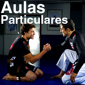Program de Aulas Particulares