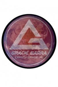 2009 Establishment of Gracie Barra Regional Divisions - Gracie Barra Brazilian Jiu-Jitsu Heritage - Rohnert Park, CA