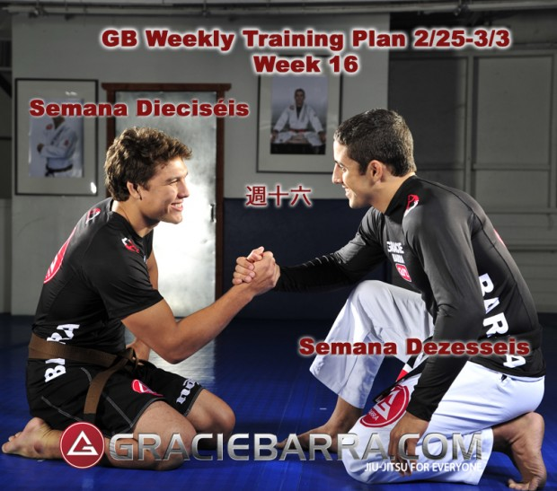 GB Weekly Training Plan Week 16