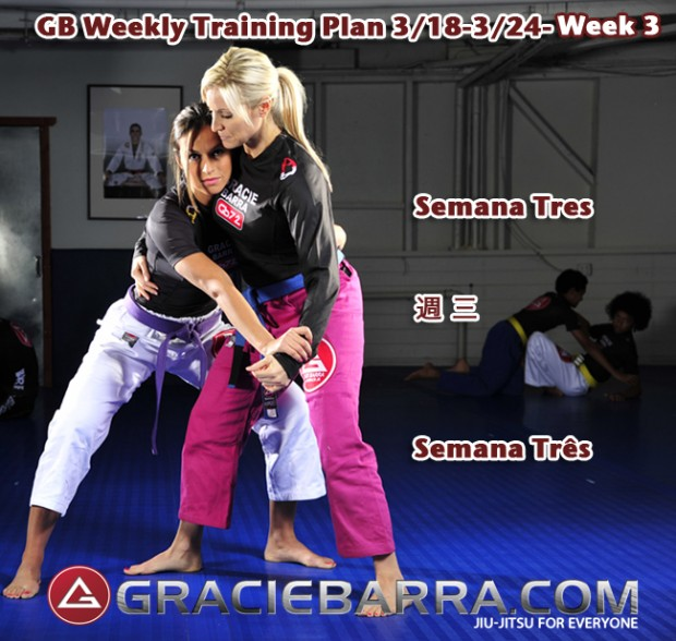 Gracie Barra GWTP3