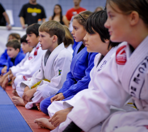 Jiu Jitsu experience