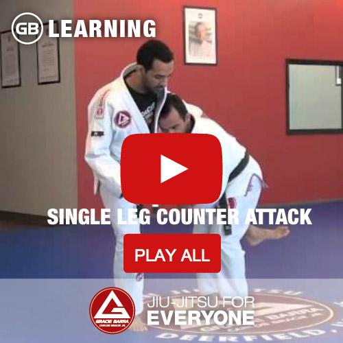 Single Leg Counter Attack